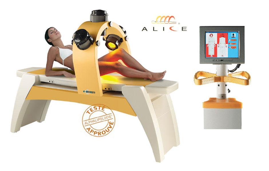 alice-major-alfalipologia